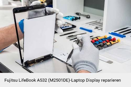 Fujitsu LifeBook A532 (M2501DE) Notebook Display Bildschirm Reparatur