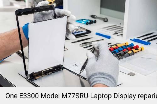 One E3300 Model M77SRU Notebook Display Bildschirm Reparatur