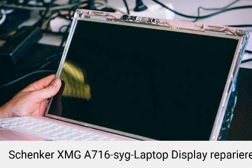 Schenker XMG A716-syg Notebook Display Bildschirm Reparatur