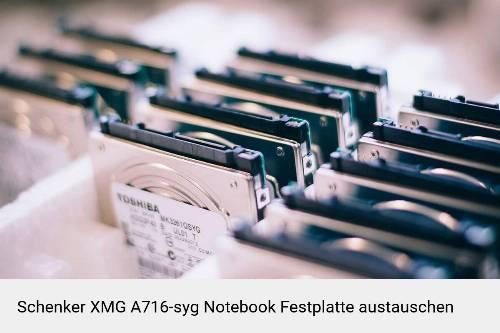 Schenker XMG A716-syg Laptop SSD/Festplatten Reparatur